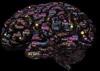 Par contre, il y a une grande différence entre le comportement de s'alimenter, et celui, compulsif, de consommer une alimentation hypercalorique et ultra transformée qui est la seule à modifier notre système hormonal et cérébral de contrôle de l'appétit/satiété.