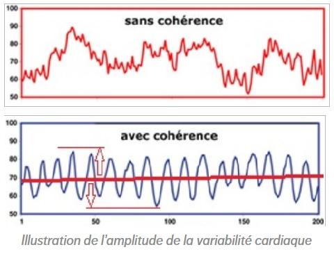 Une faible variabilité est synonyme de dépression, une grande variabilité est synonyme de bonne santé : couplez la nutrithérapie avec la cohérence cardiaque.