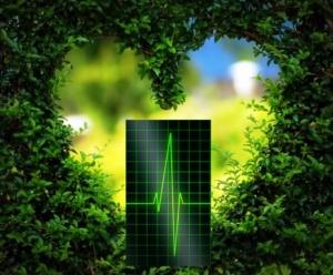 Physionutrition et nutrithérapie : Le concept de cohérence cardiaque est issu des recherches médicales en neurosciences et neuro-cardiologie réalisées aux Etats-Unis il y a une vingtaine d'années.