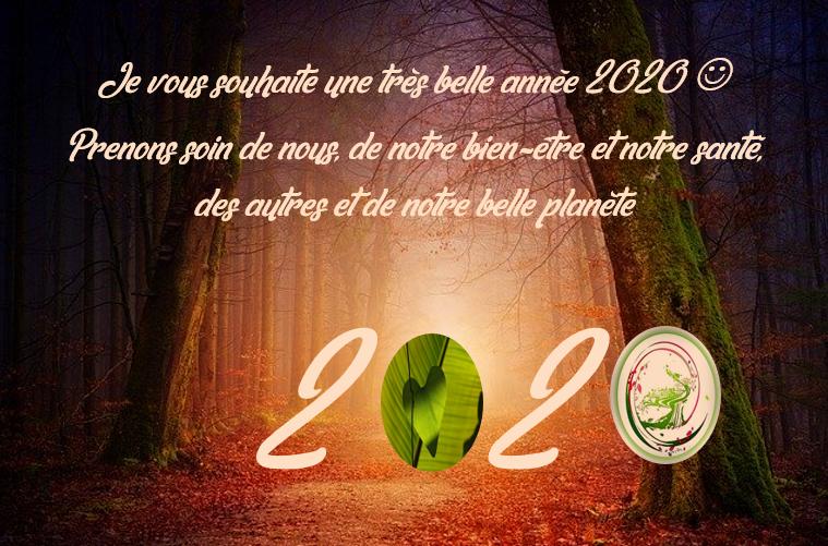Pour prendre soin de vous, la nutrithérapie, l'olfactothérapie, et l'aromathérapie sont des bons outils pour réussir cet objectif santé. Prenez rendez-vous pour mettre en place vos bonnes résolutions de l'année 2020.