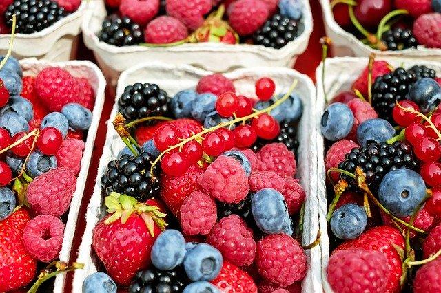 En nutrithérapie, les fruits rouges et noirs sont utilisés comme source d'antioxydants puissants.