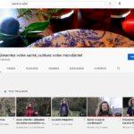 Nouvelles vidéos sur ma chaîne YouTube : Olfaction et méditations olfactives